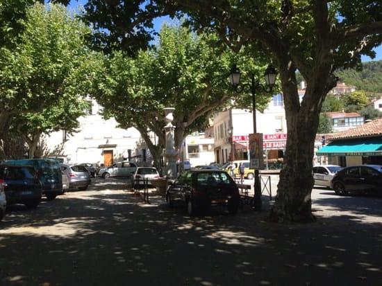 Restaurant : La Fontaine  - Vue de la terrasse sur la place ombragée du village. -