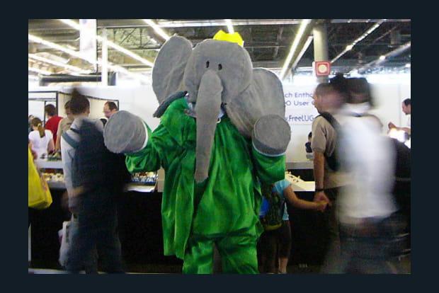 On a vu le roi des éléphants