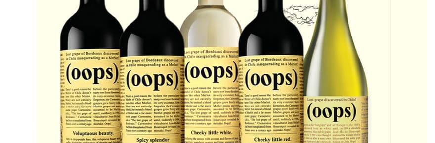 Les étiquettes de vins les plus originales