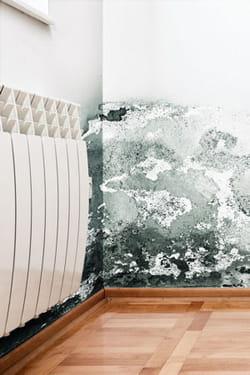 18 solutions pour traiter l 39 humidit. Black Bedroom Furniture Sets. Home Design Ideas