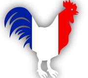 cette marseillaise faillit coûter très cher aux deux français.