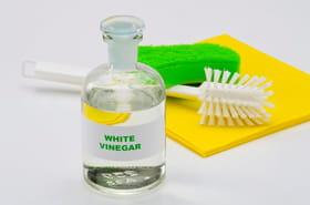 30manières d'utiliser le vinaigre blanc à la maison