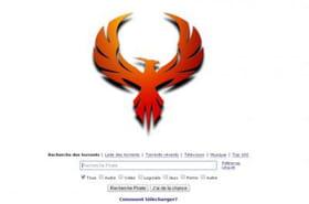 Pirate Bay France : le site de Torrent arouvert, même dans l'Hexagone