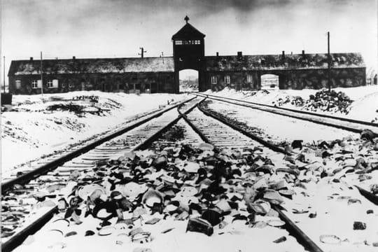 Auschwitz: le27janvier 1945, lalibération ducamp [ENIMAGES]
