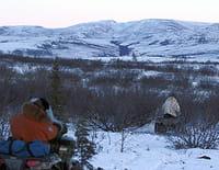 Into The Wild : Alaska : A court de provisions