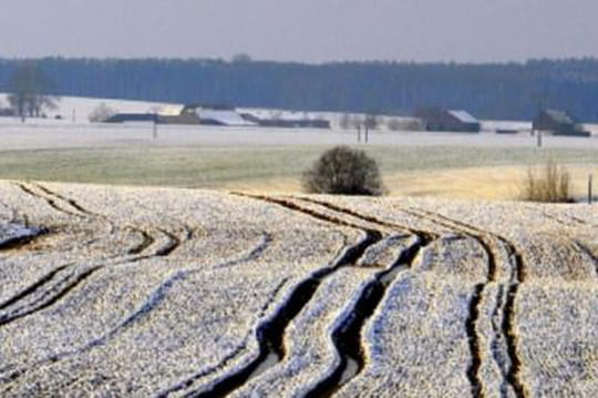 Neige: où et quand cela va tomber? Les prévisions