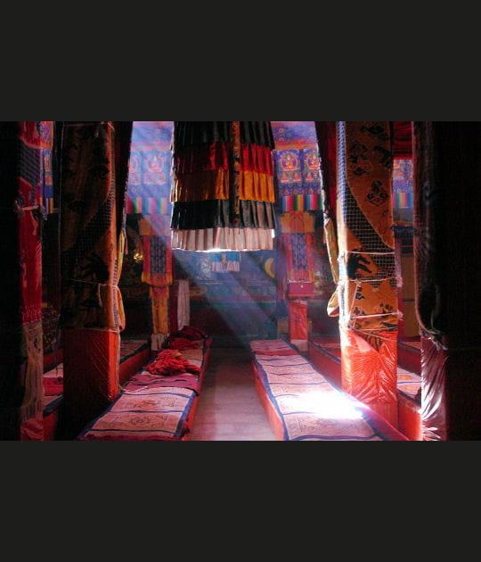 Dans l'intimité des temples