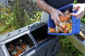 Composteur: comment choisir le meilleur modèle? Conseils et sélection