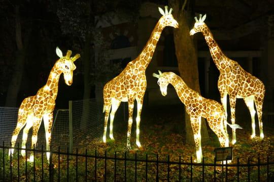 Jardin des plantes: la Ménagerie, zoo historique de Paris