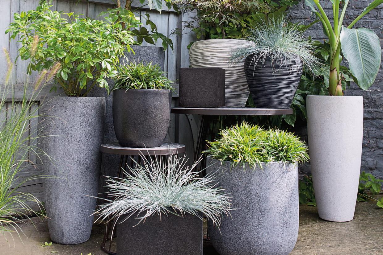 des pots de fleurs de toutes les tailles et toutes les formes. Black Bedroom Furniture Sets. Home Design Ideas