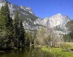 Au coeur des parcs nationaux d'Amérique