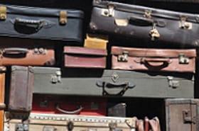 Un zoo dans les bagages