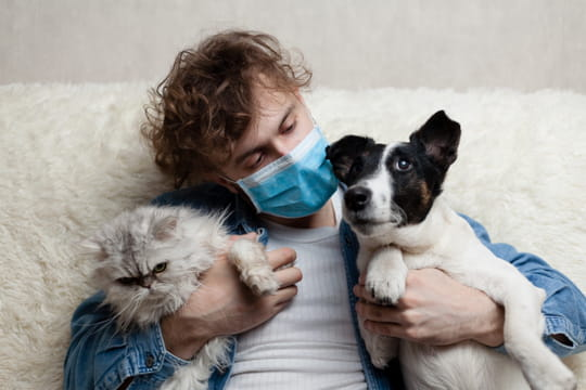 Chat, chien et coronavirus: transmettent-ils le Covid? Ce que l'on sait