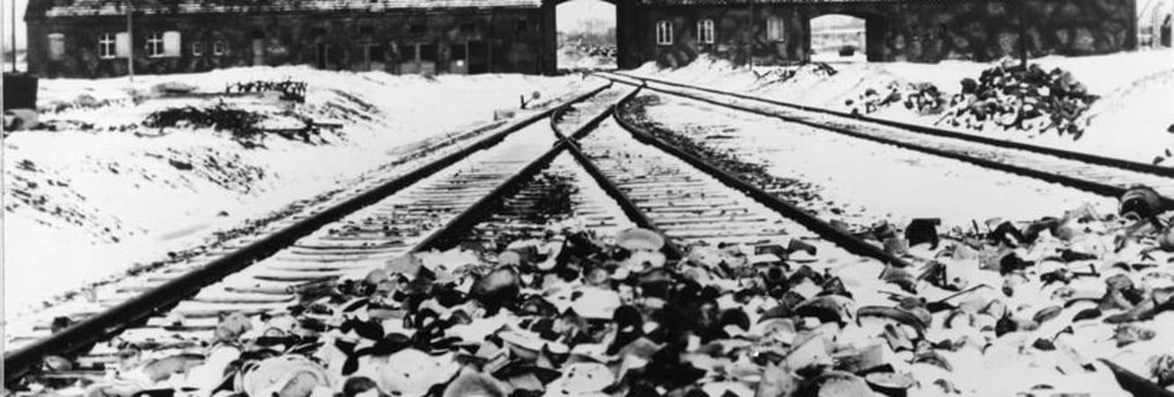 Les premières images de lalibération d'Auschwitz