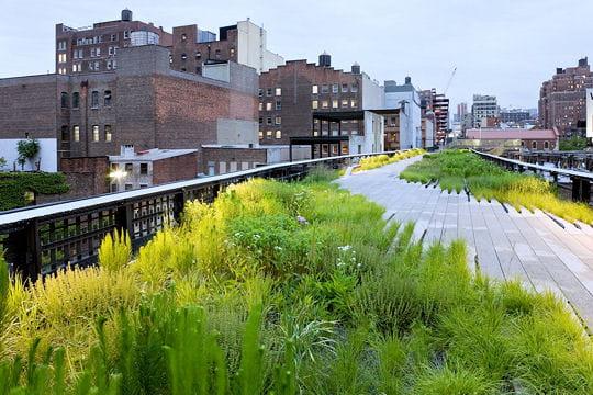 L'association des amis de la High Line
