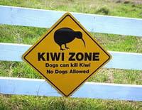 Découvrir le monde : Nouvelle-Zélande, culture nature