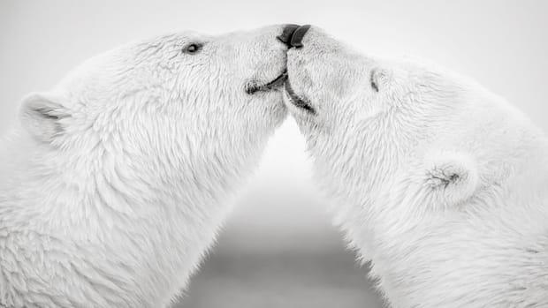 Un tendre baiser