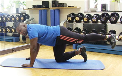 travail fessiers musculation