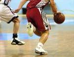 Basket-ball - Bamberg (Deu) / Dijon (Fra)