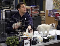 Brooklyn Nine-Nine : Les chatons de Terry