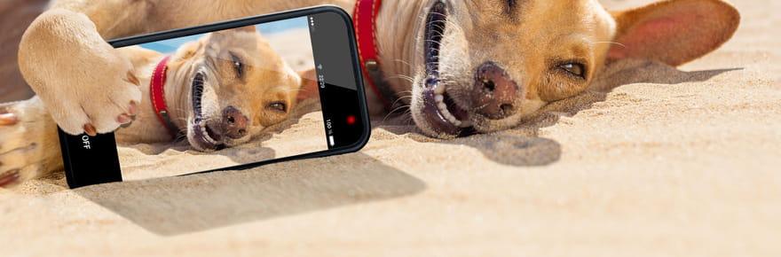 Selfie: comment faire un selfie, les meilleurs et les pires tendances