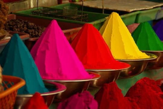Aux couleurs du Karnataka