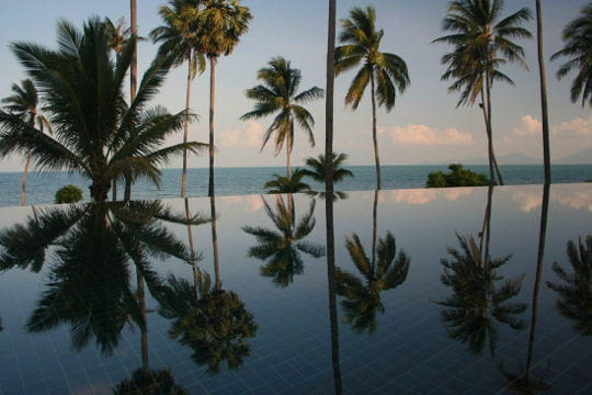 Réflexion du paradis