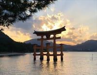 Sur la piste des senteurs : Japon d'Hiroshima à Yakushima